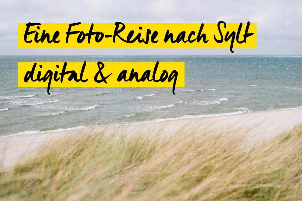 Teaser Eine Foto-Reise nach Sylt - digital und ana